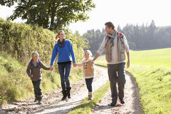 Young family walking in park. Holding hands Royalty Free Stock Photo