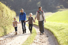 Young family walking in park. Holding hands Royalty Free Stock Photos