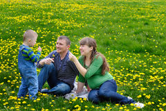 Young family walking on a spring meadow with yellow flowers Stock Photography