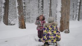 A young family in the wood. Mother with the daughter cheerfully spend time in the winter wood. The small child and stock video