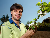 Young farmer with an apple tree Stock Image