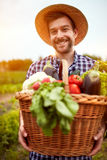Young farmer with basket full of vegetables stock photography