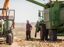 Young farmer in corn fields during harvest Stock Photography