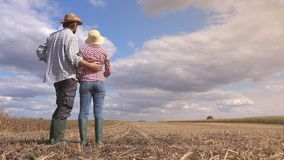 Young farmer couple stock video footage