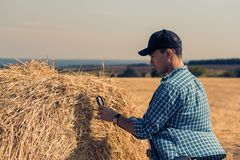 A young farmer in a field with a tablet and a magnifying glass evaluates the hay harvest. Young farmer in field with tablet and magnifying glass evaluates the royalty free stock photos