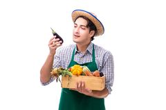The young farmer with fresh produce isolated on white background stock images