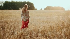 Young farmer girl walking through wheat field at sunset. Modern farming, happy youth and profession concept. Organic stock video