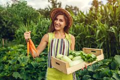 Young farmer holding carrots and wooden box filled with fresh vegetables. Woman gathered summer crop. Gardening stock photos