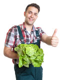 Young farmer with lettuce showing thumb up Stock Photography
