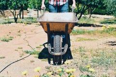 Young farmer man pushing a wheelbarrow Stock Photography