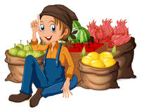 A young farmer near his harvested fruits royalty free illustration