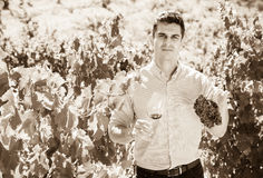 Young farmer posing with wine and grape. At summertime Stock Photography