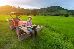 Young Farmer Recorded Growth Of Productivity Sitting On A Tractor In The Background A Rice Paddy Fields, Mountains And Sky. Stock Photography