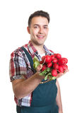 Young farmer with red radishes in his hand Royalty Free Stock Photography