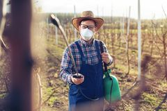 Young farmer spraying the trees with chemicals in the orchard. Young farmer spraying the trees with chemicals in the spring orchard royalty free stock images