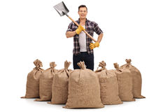 Young farmer standing behind burlap sacks and holding a shovel Royalty Free Stock Image