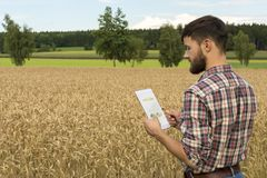 Young farmer with tablet inspecting crop Stock Images