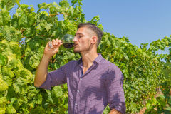 Young farmer tastes a glass of red wine Royalty Free Stock Photo