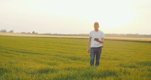 Young Farmer using digital tablet stock video footage