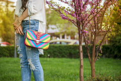 Young fashion business woman with handbag Stock Photography