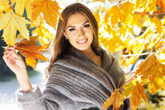 Young fashion girl in autumn park Royalty Free Stock Images