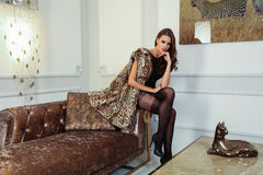 Young fashion lady in a stylish modern interior. Royalty Free Stock Image