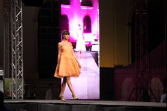 Young fashion model on stage Stock Image