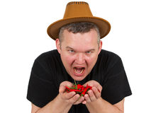 Young fat man with chili in his hands. Stock Photos