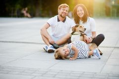 Young father holds the little daughter on hands. Wonderful young family is resting sitting on the ground. Dad, Mom, little daughter and beagle. Warm summer royalty free stock photography