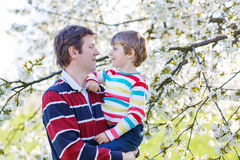 Young father and little kid boy in blooming garden Royalty Free Stock Photo