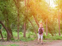 Young father with son on shoulders standing against a background of green forest. Back view. Sunlight.  Royalty Free Stock Photo