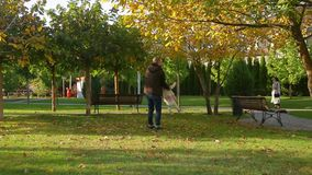 Father walks with his lovely cute infant daughter on autumn lawn in pictorial city park with trees and fallen yellow leaves. Young father walks with his lovely stock video footage