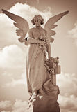 Young female angel in sepia shades Stock Photos