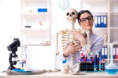 The young female archaeologist working in the lab. Young female archaeologist working in the lab stock image