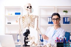 The young female archaeologist working in the lab. Young female archaeologist working in the lab stock photo