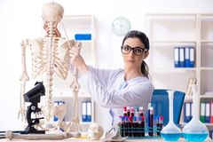 Young female archaeologist working in the lab. The young female archaeologist working in the lab stock photos