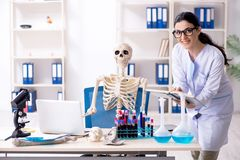 The young female archaeologist working in the lab. Young female archaeologist working in the lab royalty free stock photos
