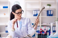 The young female archaeologist working in the lab. Young female archaeologist working in the lab stock photography