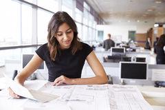Young female architect working with blueprints in an office Stock Photography