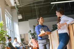 Young female Asian entrepreneur in an open working space.  royalty free stock images