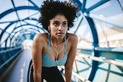 Looking forward to her morning run royalty free stock images