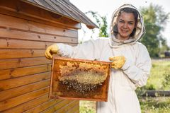 Young female beekeeper hold wooden frame with honeycomb. Collect honey. Beekeeping concept.  stock image