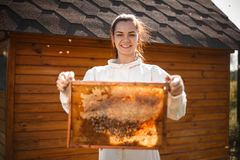 Young female beekeeper hold wooden frame with honeycomb. Collect honey. Beekeeping concept.  royalty free stock image