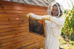 Young female beekeeper hold wooden frame with honeycomb. Collect honey. Beekeeping concept stock photos