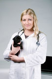 Young female blonde veterinarian holding a cute pug puppy. Young female blonde veterinarian holding a cute black pug puppy. STudio shot Royalty Free Stock Image