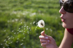 Free Young Female Blowing A Dandelion Stock Photos - 15171813