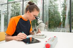 Young female botanist examining samples of plant under microscop. Botanist Examining Plant Samples Under Microscope While Using Digital Tablet Stock Image