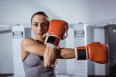 Young female boxer Royalty Free Stock Image