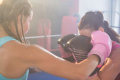 Young female boxers fighting in boxing ring. At fitness studio Royalty Free Stock Images