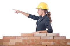 Young female builder Stock Images